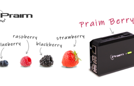 Discover all the secrets of Berry in two minutes!